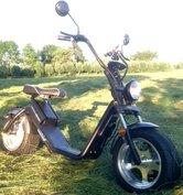 Heerlijk rijden met onze scooter over de veluwe